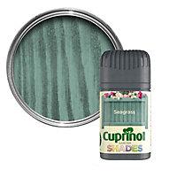 Cuprinol Garden shades Seagrass Matt Wood paint, Tester pot