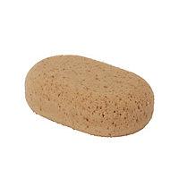 Decorators Sponge, Pack of 5