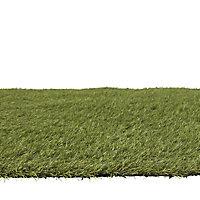 Dennis Artificial grass 4m² (T)22mm