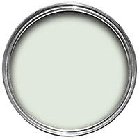 Dulux Easycare Bathroom Jade white Soft sheen Emulsion paint, 2.5L