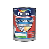 Dulux Weathershield All weather protection Pure brilliant white Smooth Matt Masonry paint, 5L
