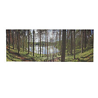 Forest Multicolour Canvas art (H)450mm (W)450mm