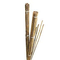 Gardman Bamboo Cane 184cm, Pack of 10