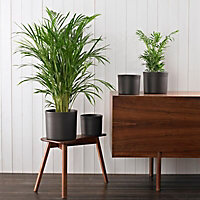 Glazed Dark grey Ceramic Straight edge Plant pot (Dia)36cm