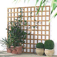 Grange Traditional Square Trellis panel (W)0.32m (H)1.83m
