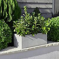 Hoa Light grey Plastic Rectangular Trough 80cm