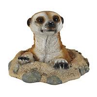 In My Garden Meerkat Ornament