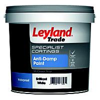 Leyland Trade White Mid sheen Anti-damp paint, 2.5L