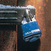 Master Lock Steel Cylinder Open shackle Padlock (W)40mm