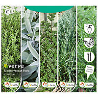 Mediterranean herb collection Seed