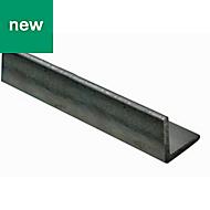 Varnished Hot-rolled steel Equal angle (H)20mm (W)20mm (L)1m