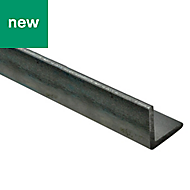 Varnished Hot-rolled steel Equal angle (H)25mm (W)25mm (L)1m