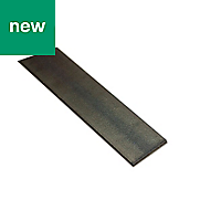 Varnished Black Drawn steel Flat sheet (H)2mm (W)16mm (L)1m