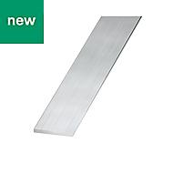 Raw Aluminium Flat sheet (H)2mm (W)40mm (L)1m