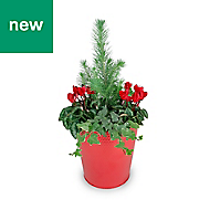 Large festive planter in Tin
