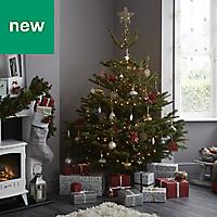 5ft Nordmann fir Cut christmas tree