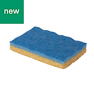 Sponge scourer pad, Pack of 10