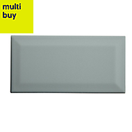 Trentie Green Gloss Ceramic Wall tile, (L)200mm (W)100mm, Sample