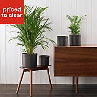Soendgen Keramik Miami Dark grey Plant pot (H)150mm (Dia)180mm