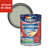 Dulux Weathershield Frosted lake Smooth Matt Masonry paint, 5L