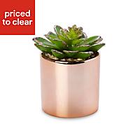 Glitter succulent Decorative plant