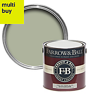 Farrow & Ball Estate Vert de terre No.234 Matt Emulsion paint 2.5L