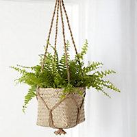 Natural Seagrass Herringbone Round Plant pot (Dia)20.5cm