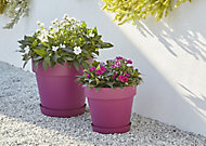 Nurgul Pink Plastic Round Plant pot (Dia)40cm