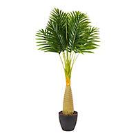 Palm tree Decorative plant