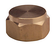 Plumbsure Brass Threaded Blanking cap (Dia)12.7mm