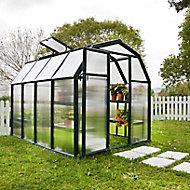 Rion Ecogrow 6x8 Barn Greenhouse