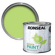 Ronseal Garden Lime zest Matt Metal & wood paint, 250ml