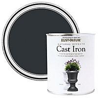 Rust-Oleum Natural effect Cast iron Matt Multi-surface Special effect paint, 250ml