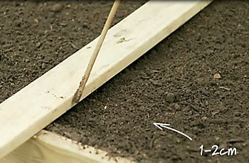 Making rows in soil