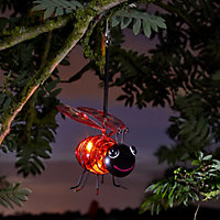 Solar Red Ladybird Solar-powered LED Outdoor Decorative light