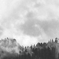 Splashwall Matt Black & white Misty woods Acrylic Splashback, (H)600mm (W)2440mm (T)4mm