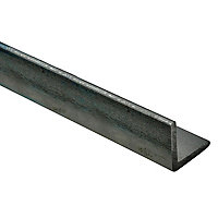 Varnished Hot-rolled steel Equal L-shaped Angle profile, (L)1m (W)25mm