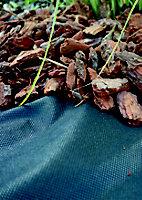 Verve Black Polypropylene Weed control fabric, (L)3m (W)3m