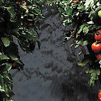 Verve Black Polypropylene Weed control fabric, (L)5m (W)5m