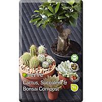 Verve Cacti & succulent Compost 5L
