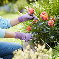 Verve Nylon Lavender Gardening gloves, Medium