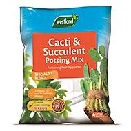 Westland Cacti & succulent Compost 4L