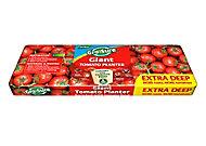Westland Gro-Sure Tomato Grow bag 55L