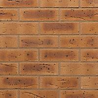 Wienerberger Harvest buff multi Heart Facing brick (L)215mm (W)102.5mm (H)65mm