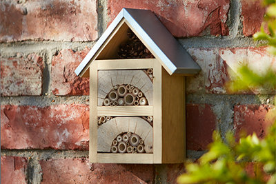 Bring nature and wildlife into you garden with B&Q