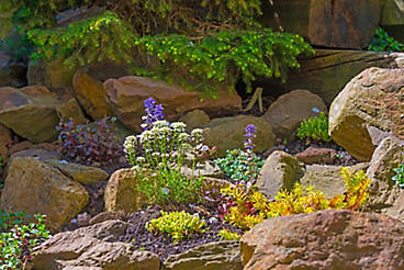 rockery in a container