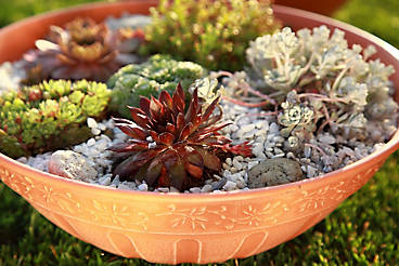 how to build a rockery