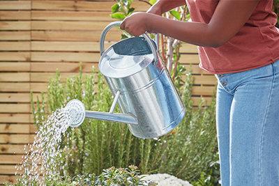 Growing your garden at B&Q, your gardening calendar