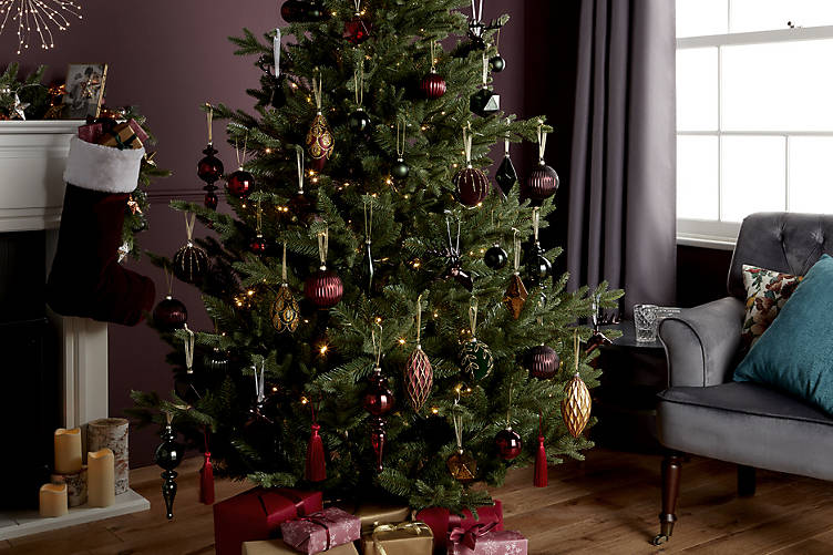How To Take Care Of A Real Christmas Tree.How To Care For A Real Christmas Tree Ideas Advice Diy